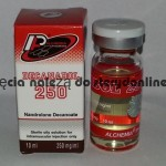 Nandrolon Decanate DECANABOL 250 all