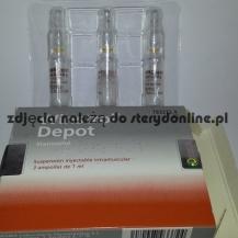 Stanazolol 50mg WINSTROL DEPOT Desma3
