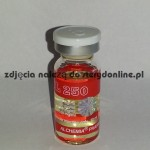 Testosterone Propionate sustabol ampułka