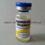 decanabol euro pharmacies