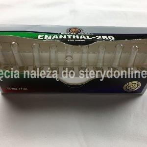 3. Enanthal-250 (Testosteron Enanthate)