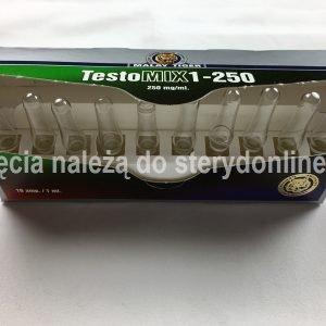 Testo-MIX1-250 Malay